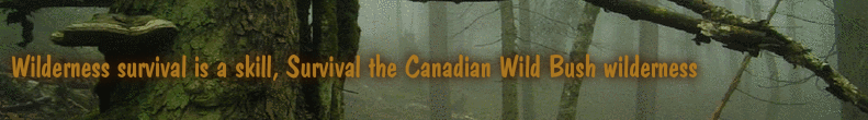 Wilderness survival is a skill, Survival the Canadian Wild Bush wilderness