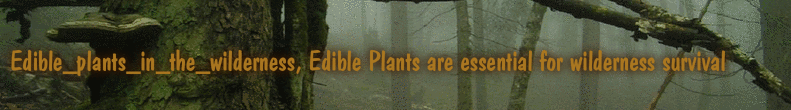 Edible_plants_in_the_wilderness, Edible Plants are essential for wilderness survival