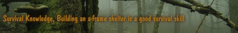 Survival Knowledge, Building an a-frame shelter is a good survival skill