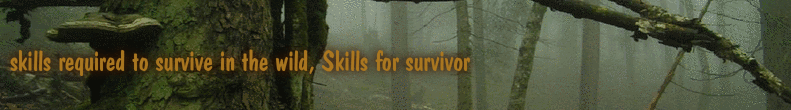 skills required to survive in the wild, Skills for survivor