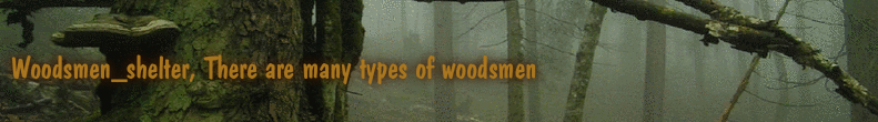 Woodsmen_shelter, There are many types of woodsmen